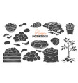 potato products glyph icons set vector image vector image