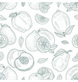 seamless pattern contours apples lemons vector image vector image