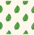 seamless pattern with green mint leaves vector image vector image