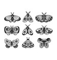 set isolated black magic moths and butterflies vector image