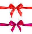 two red ribbons vector image