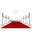 vip event red carpet with chrome barriers vector image
