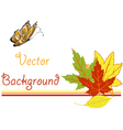 Bright pattern with autumn leaves vector image vector image