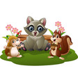 cartoon raccoons porcupines funny squirrels vector image