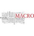 macro word cloud concept vector image vector image