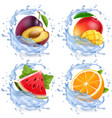 mango watermelon orange plum in water splash vector image