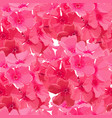 seamless background pink phlox vector image vector image