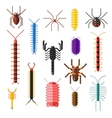 Spiders and scorpions dangerous insects animals vector image