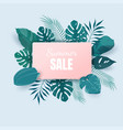 summer sale background with exotic tropical leaves vector image vector image