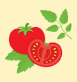 tomato cartoon in flat style vector image vector image