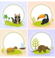 toucan bird raccoon turtle armadillo set of vector image vector image