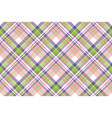 beauty plaid fabric texture seamless pattern vector image vector image