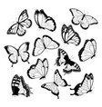 black and white flying butterflies vector image vector image