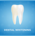 dental veneer teeth whitening whitening vector image