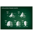 Different Types of Population Pyramids vector image vector image