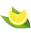 Lemon and leaves vector image vector image