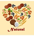 Natural nuts and cereals poster vector image vector image