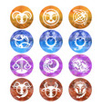 zodiac signs astrology symbols cartoon horoscope vector image
