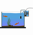 aquarium equipment vector image
