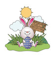 bunny with easter egg vector image vector image