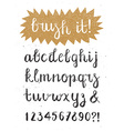 Calligraphic Brush Pen Font Hand Drawn vector image vector image