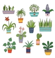 Cute hand drawn flowers in the pots vector image vector image