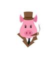 funny cartoon capitalist pig caricature rich vector image