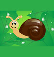 little snail on leaves vector image vector image