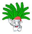 santa fresh fern branch isolated on mascot vector image vector image