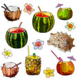 tropic cocktails vector image vector image