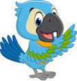 cartoon macaw vector image