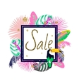 Frame banner for summer sale advertisement Palm vector image vector image