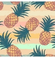 hand drawn seamless pattern with pineapple vector image