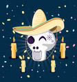 mask of the santa death with mustache and hat vector image vector image
