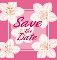 pink card background with decorative flowers and vector image vector image