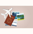 plane model passports and tickets vector image vector image