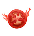tomato slice with juice vector image vector image