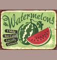watermelons farm retro sign vector image vector image