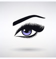 female eye with long eyelashes vector image vector image