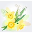 floral background with daffodils vector image vector image