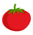 red eco tomato icon cartoon style vector image