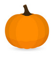 thanksgiving pumpkin isolated on white background vector image