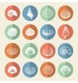 White sea shells icons set vector image