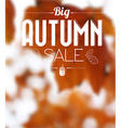 Autumn sale retro poster vector image