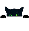 cute black cat face with green eyes peekings vector image