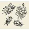 Flowers Hand drawn sketch flower rose dogrose vector image vector image
