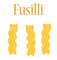 Fusilli pasta vector image vector image
