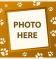 paw frame vector image vector image