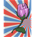 vintage grunge background with rose vector image