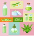 aloe vera perfumes cream soap grass leaf vector image vector image